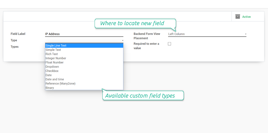 Types of custom fields for access keys