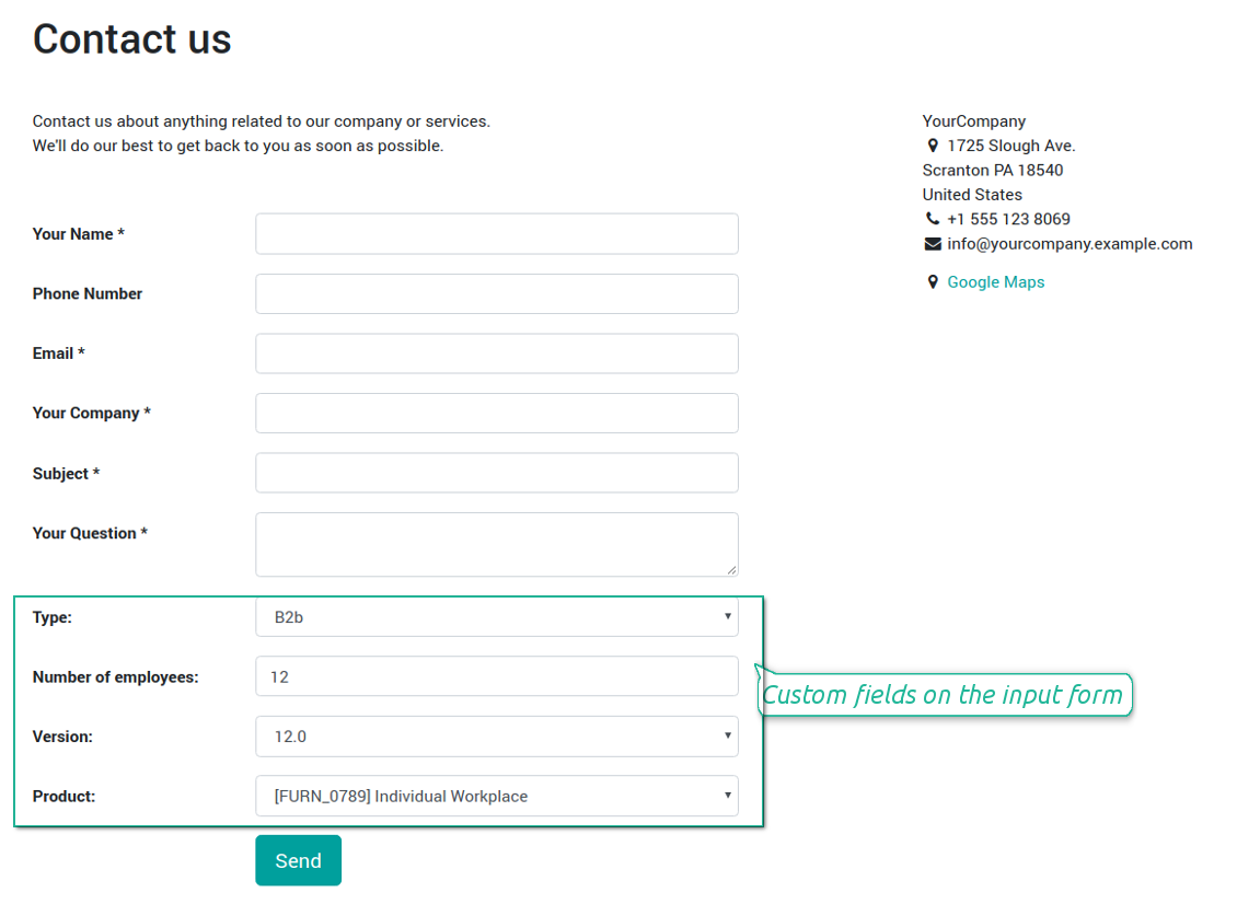 Website contact us form custom fields