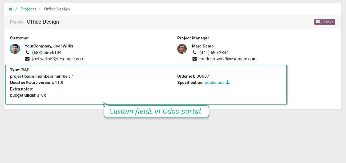 Projects' custom fields in portal
